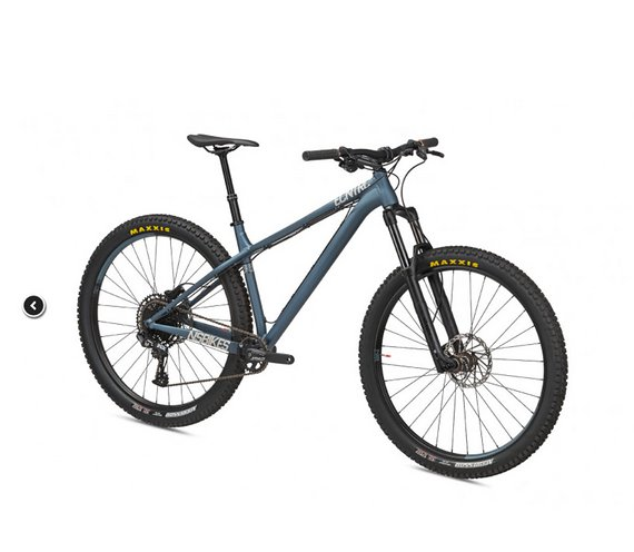 "NS Bikes ECCENTRIC ALU - 29"" Mountainbike - 2020 - Sharkskin"